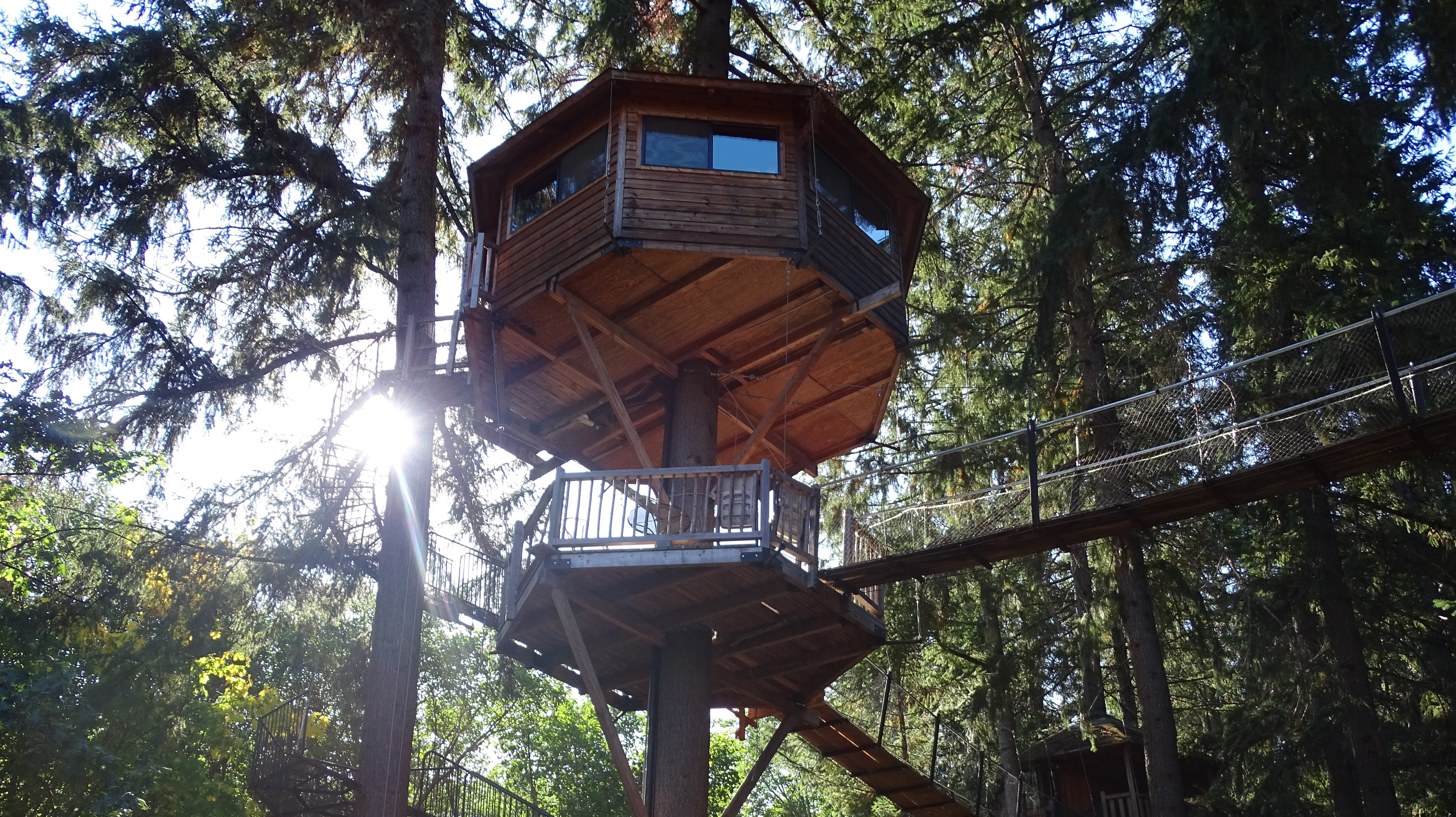 Tree house designs precision structural engineering for Structural engineer for houses
