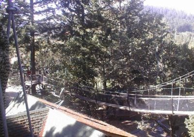 mountain-view-treeway-bridge-1-01 - Treehouse