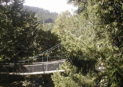 mountain-view-treeway-bridge-1-02 - Treehouse
