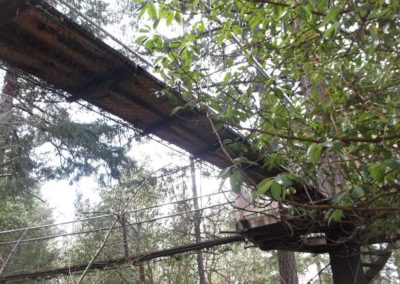 mountain-view-treeway-bridge-1-04 - Treehouse