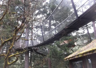mountain-view-treeway-bridge-1-05 - Treehouse