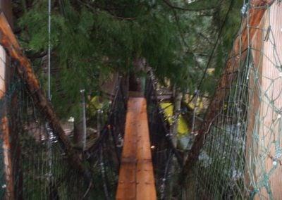 Treehouse-Bridges