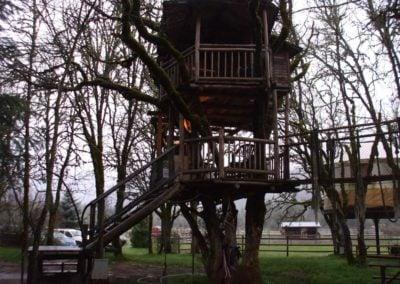 serendipitree_12 - Treehouse