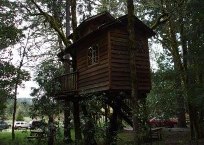 serendipitree_17 - Treehouse