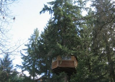 Balcontree Treehouse