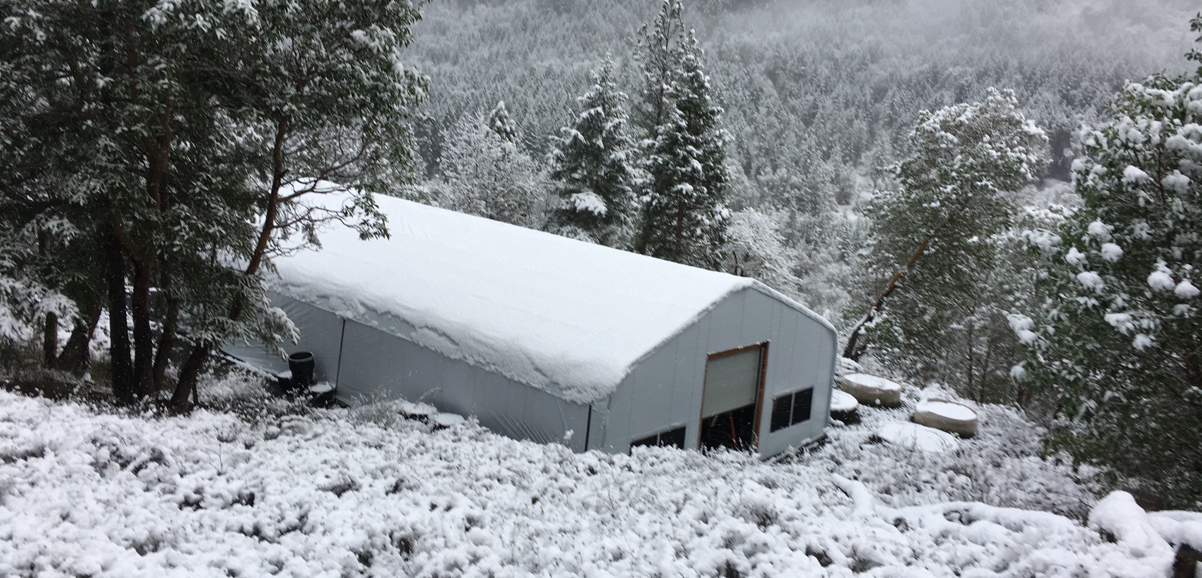 Snow covered Greenhouse