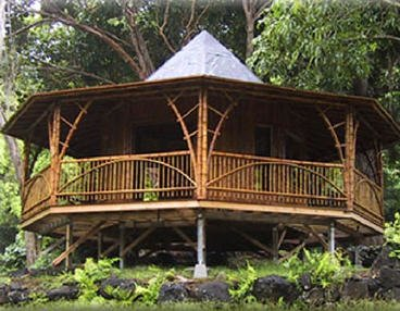 Bamboo House Design Precision Structural Engineering