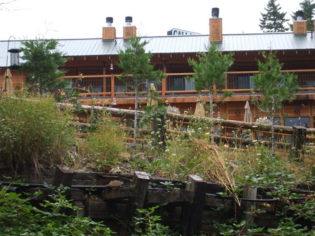 Commercial-Building-Log