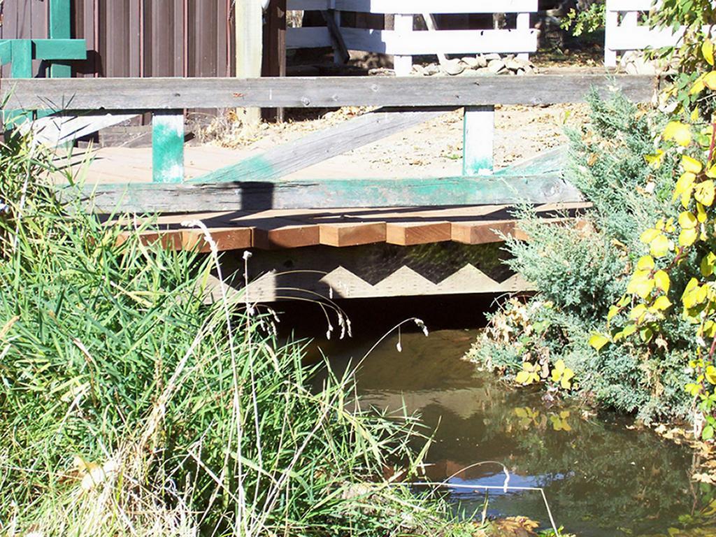 castor-bridge_0243