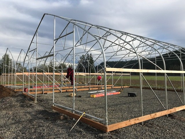 Greenhouse-Design-Framing