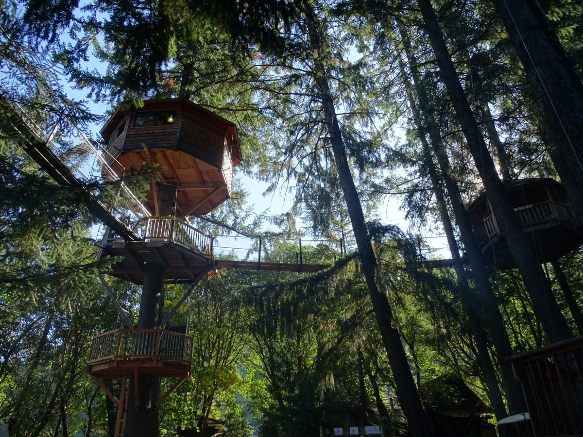 Picture of: Tree House Design Engineering Pse Consulting Engineers Inc