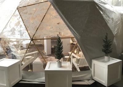MOET Dome – Jackson Hole WY
